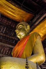 The Golden Buddha statues.