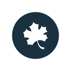 autumn leaf circle background icon.