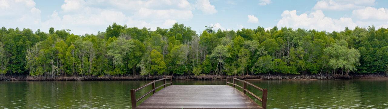 Wooden bridge at mangrove forest