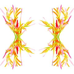 Wall Mural - Heliconia Sassy