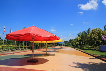Umbrella at the pathway