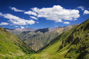 Mountains in summer time. Beautiful natural rural landscape