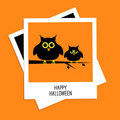 Instant photo with cute owls. Halloween card. Flat