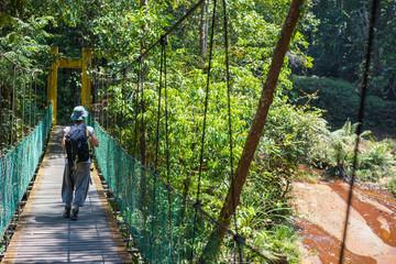 Trekking in Borneo rainforest