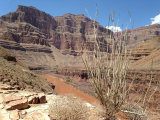 grand canyon inner vista