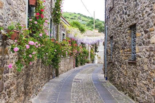 Narrow street of flowers