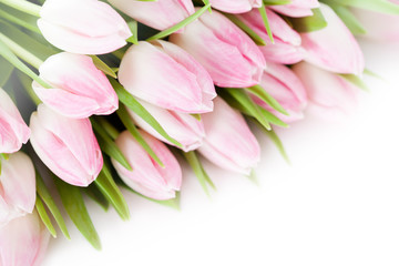 Foto op Aluminium Tulp Bunch of pink tulips on white background