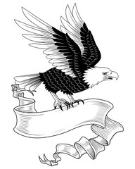 Eagle with Banner
