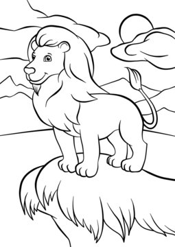 Lion stands on the rock