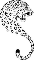 Fototapete - gepard head silhouette