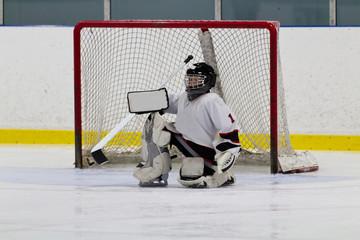 Ice hockey goaltender in front of net