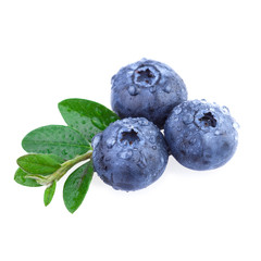 Fresh Blueberry with water droplets