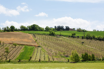 country scene in Italy.