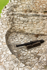 Castle cannon
