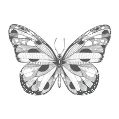 hand drawn abstract beautiful butterfly unique style