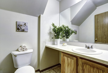 White bathroom with vaulted ceiling