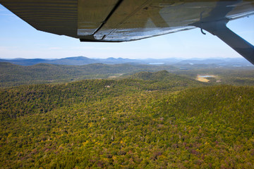 Wall Mural - Adirondack forests and lakes summer aerial view from light aircr