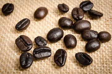 Coffee bean close up