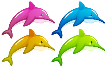 Four dolphins