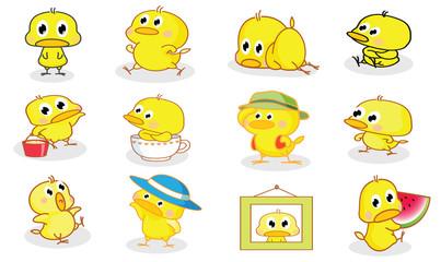 various styles cartoon chicks