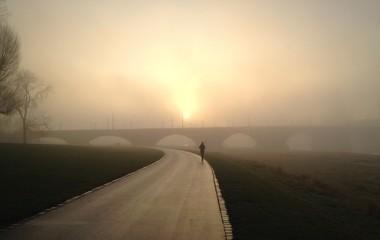 Lauf am Morgen