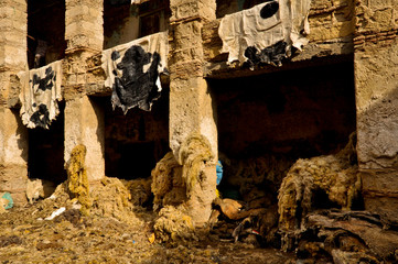 Ancient Leather Tannery in Fes
