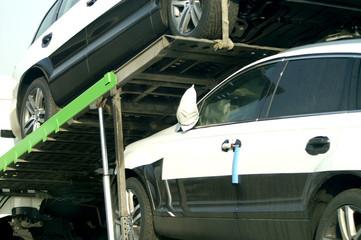 Fototapete - Auto Transporter