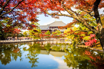 The wooden tower of To-ji Temple in Nara Japan is the largest te
