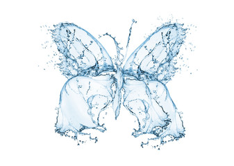 Butterfly water splash, isolated on white