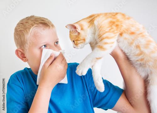 Аллергия на укусы клопов опасно ли это и как ее лечить
