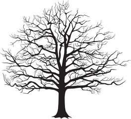 Black silhouette bare tree . Vector illustration