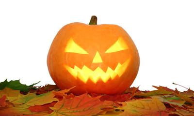 Halloween pumpkin on autumn leaves isolated