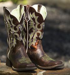 Fancy Western Boots