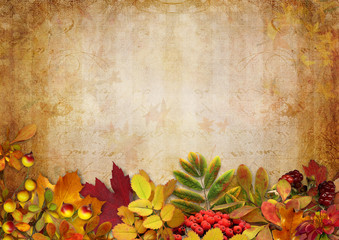 Border with autumn leaves and berries on a vintage background