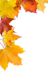 Herbst, Ahornblätter, plakativer Hintergrund, Rahmen