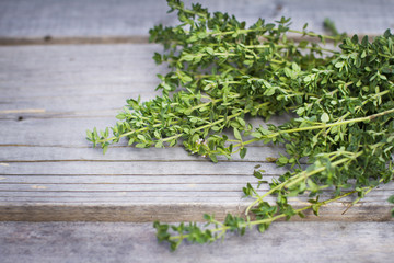 Fresh green thyme on wooden background