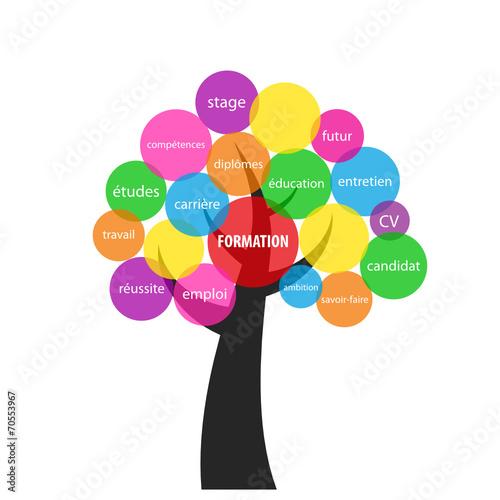 u0026quot arbre  u0026quot formation u0026quot   cv  u00e9tudes emploi r u00e9ussite dipl u00f4mes