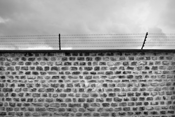 Wall and barbwire black and white