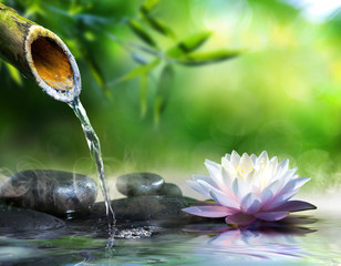 Foto auf Acrylglas Zen zen garden with massage stones and waterlily