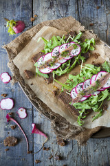 rye bread with rocket, radish slices, anchovies and seed