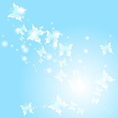 蝶々 blue