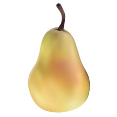 Yellow pear in vectors