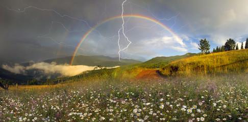 Fototapete - panorama of mountain meadows in Transcarpathia