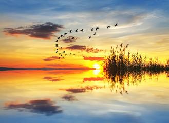 cuando el sol acaricia el lago