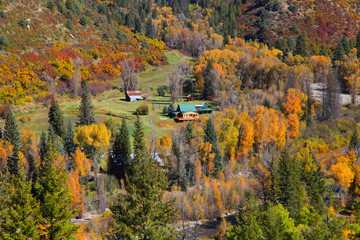 Autumn landscape in Colorado