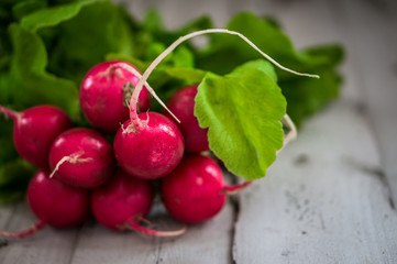 Bunch of radish on wooden background
