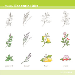 Healthy essential oils