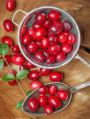 fresh cranberries on a kitchen table