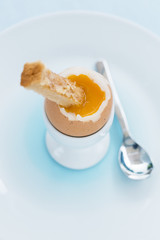 Soft boiled egg in eggcup with toast on table