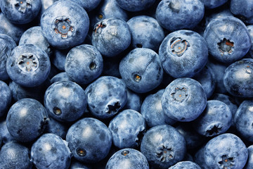 Fresh blueberries background